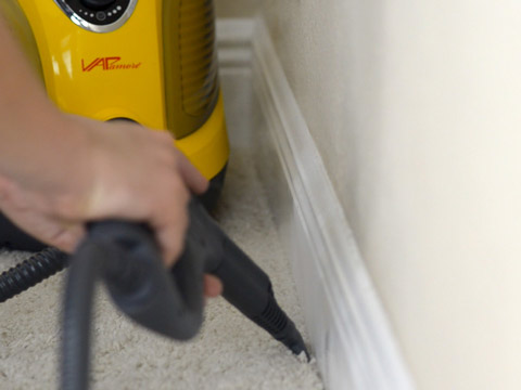 vacuuming the house to prevent and treat bed bugs