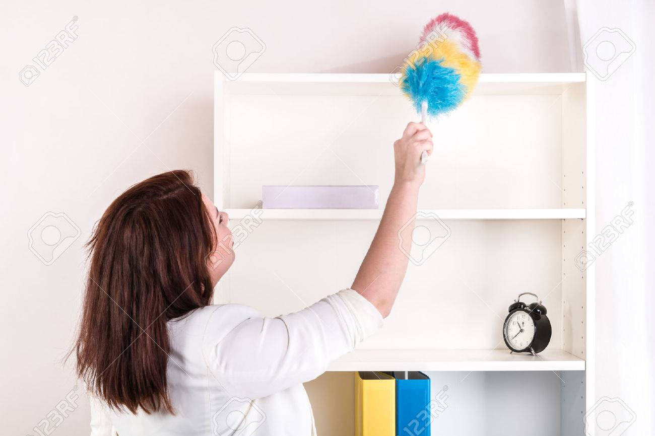 look within wall shelves to get rid of bed bugs