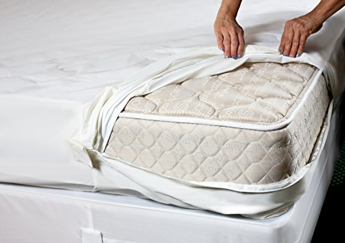 mattress encasements to get rid of bed bugs
