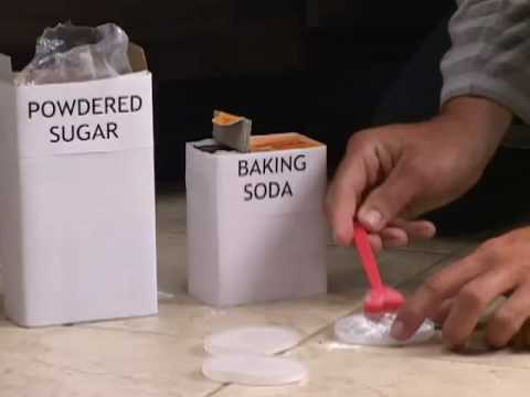 how to make bed bug trap with baking soda