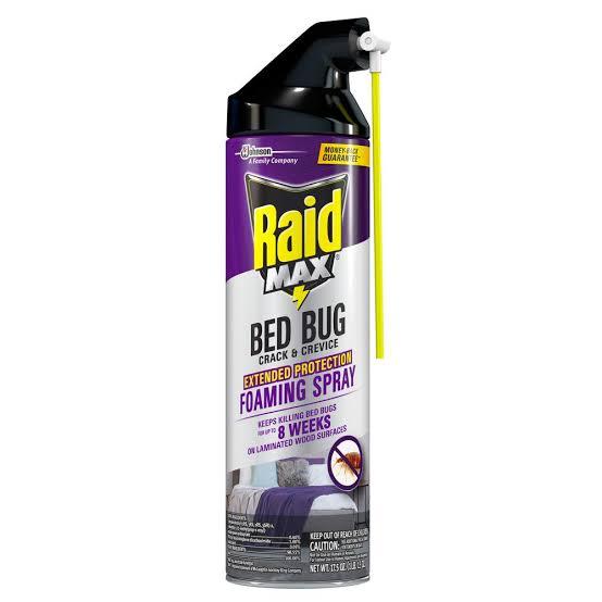 Raid Bed Bug and Flea Killer, 17.5 Ounce