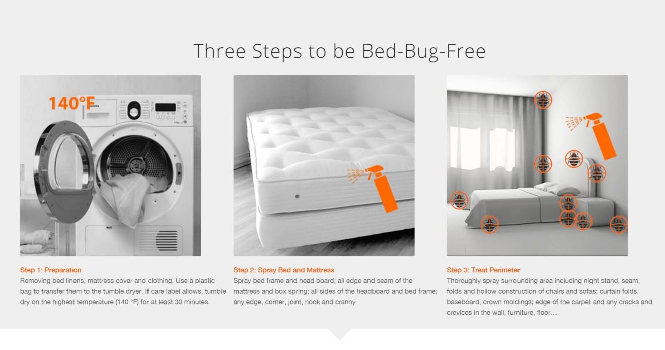 EcoRaider steps to be bed bug free