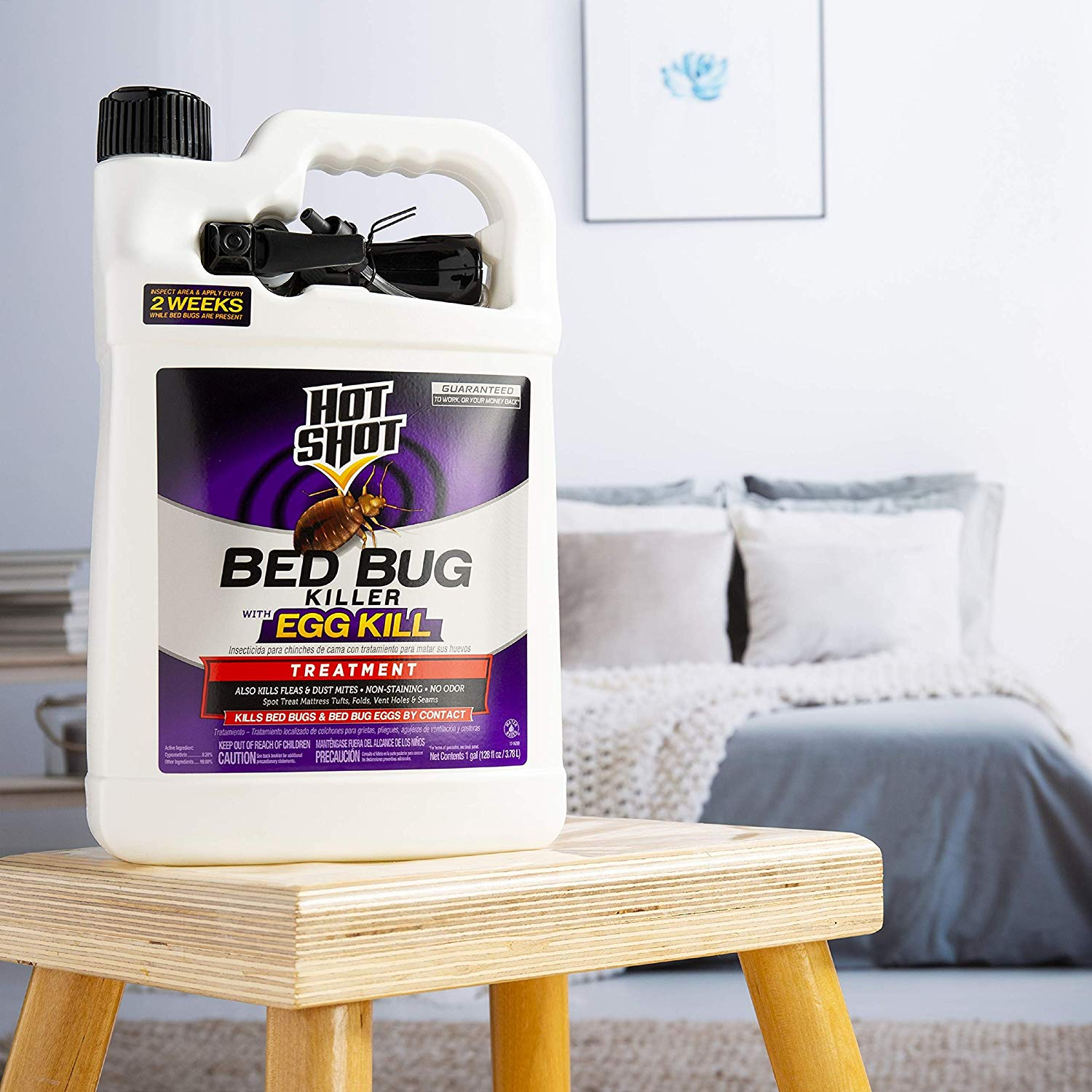 What is hot shot bed bug killer spray