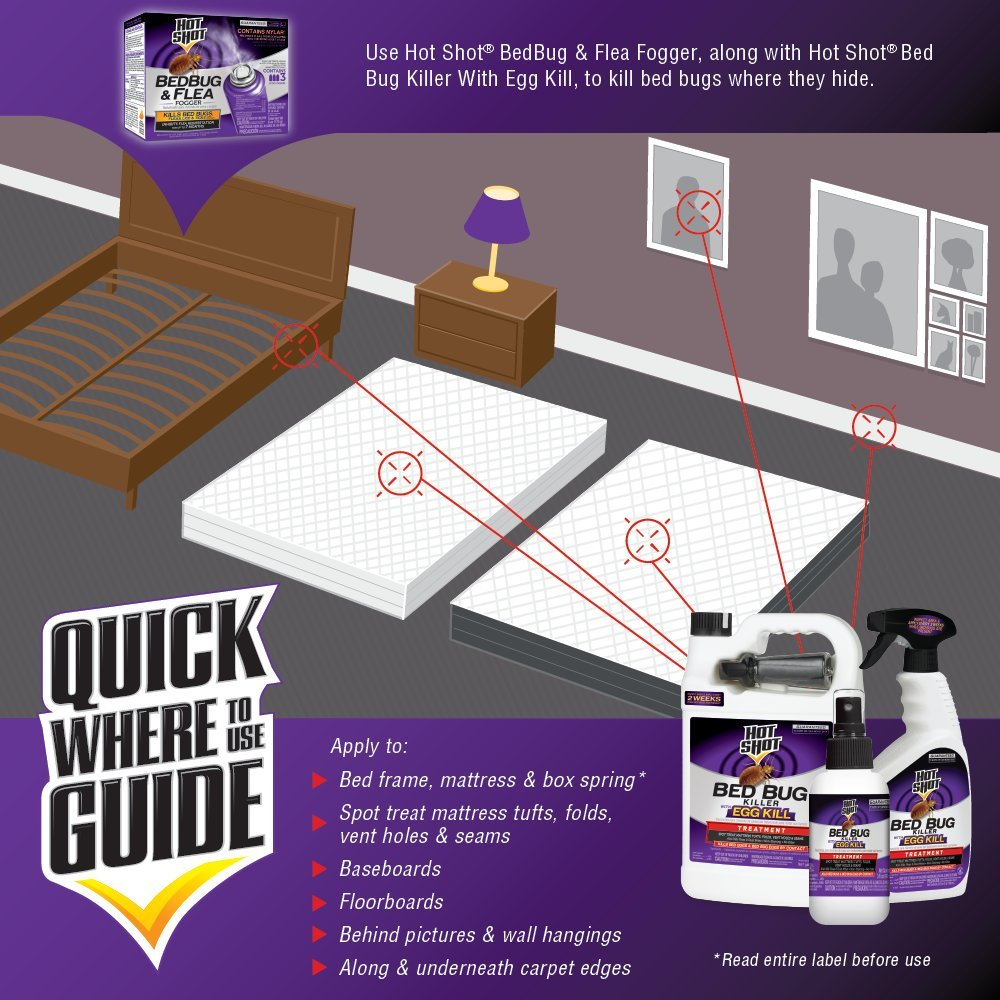 hot shot bed bug spray on mattress