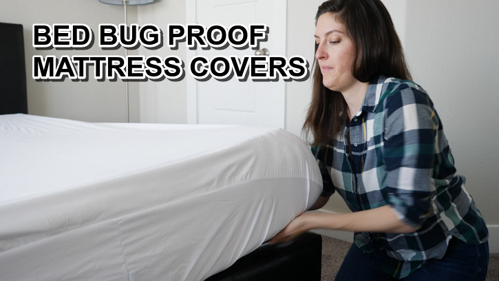BEST ANTI BED BUG PROOF MATTRESS COVERS